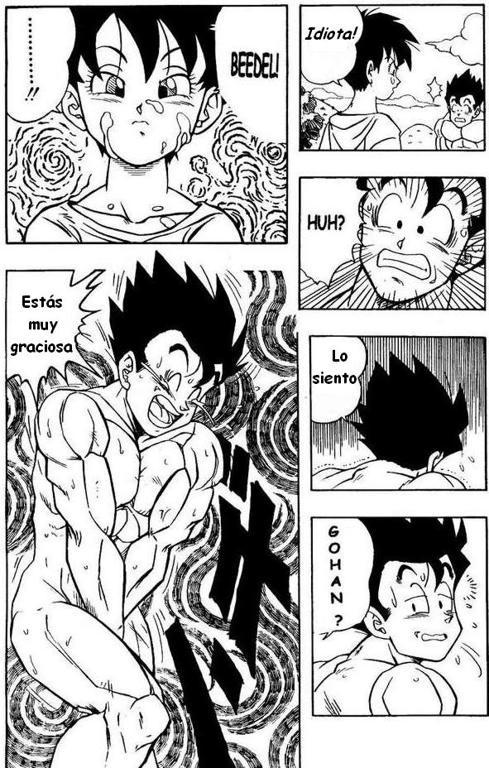 Dragon Ball H Manga Online