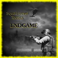[SP/Coop] Squad Level Tactics Endgame 91cf97f2374b4d4672ef2099bd0cd35917a90fb006323d744c0e32410879e8f76g