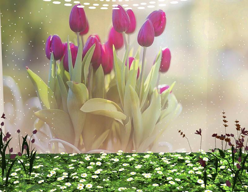 http://www.mediafire.com/convkey/0622/bwy3e6a3lyw5fcvzg.jpg