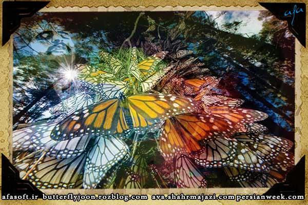 پروانه ی من - فتنه چکمه پوش - فریدون فروغی