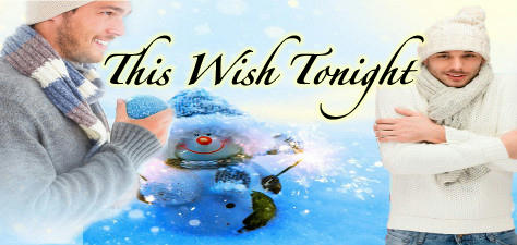 Anthology - This Wish Tonight Banner