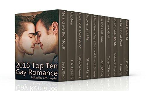2016 Top Ten Gay Romance Books Banner