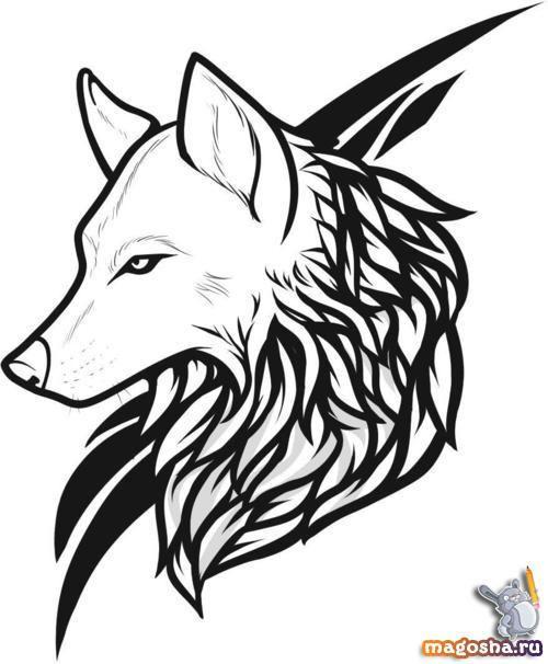рисунки картинки волк