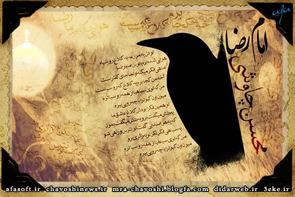 کلاغ - سنتوری - محسن چاووشی
