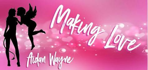 Aidan Wayne - Making Love Banner 1