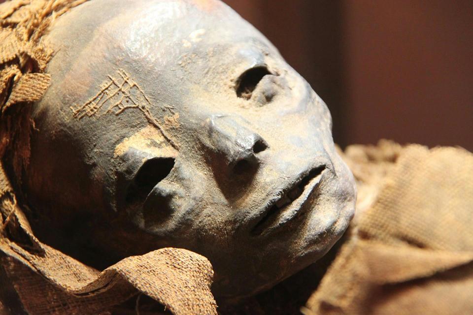 Las-momias-de-Vác,-en-Hungría,-podrían-revelar-mucho-sobre-la-tuberculosis
