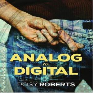 Posy Roberts - Analog to Digital Square
