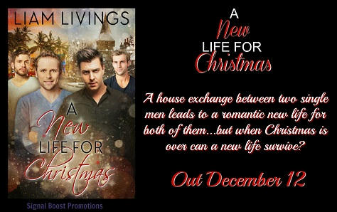 Liam Livings - A New Life For Christmas RB Banner