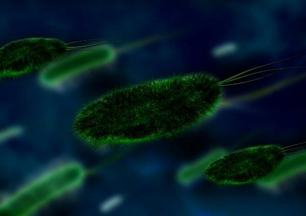 Los sistemas de salud mundiales no estarían preparados para controlar una pandemia global