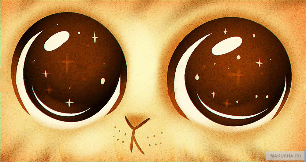 У котов милые глаза
