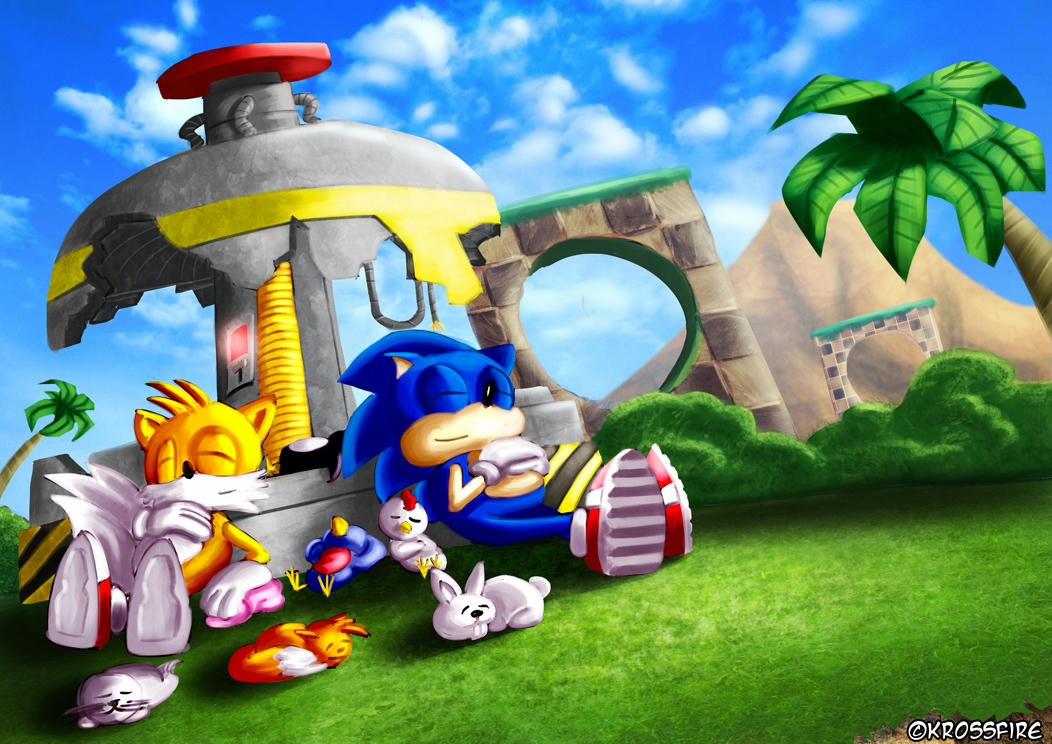 Sonic & Tails Made It!