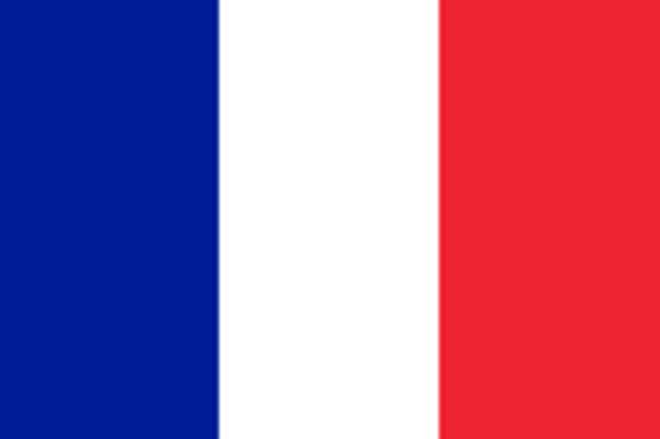 Camión atropella multitud en Niza: Más de 80 muertos y 100 heridos