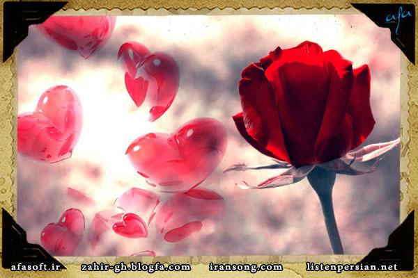 زندگی - شکوفه های کویری - سیاوش قمیشی