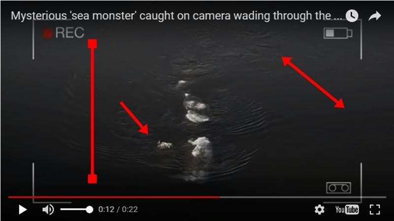 El misterioso monstruo filmado en Alaska y que recuerda al del Loch Ness