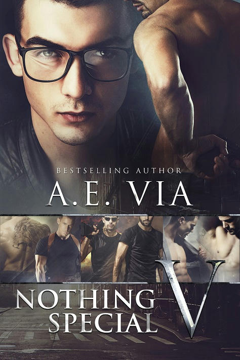 A.E. Via - Nothing Special V Cover