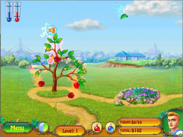 Money Tree ภาพตัวอย่าง 01