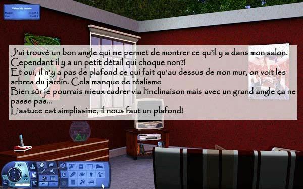 [Sims 3] [Débutant] Réussir de belles photos de ses constructions 6j277gmlaalle18zg