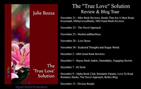 Julia Bozza - The 'True Love' Solution Banner 3