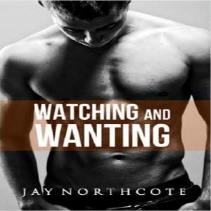 Jay Northcote - Watching and Wanting Square