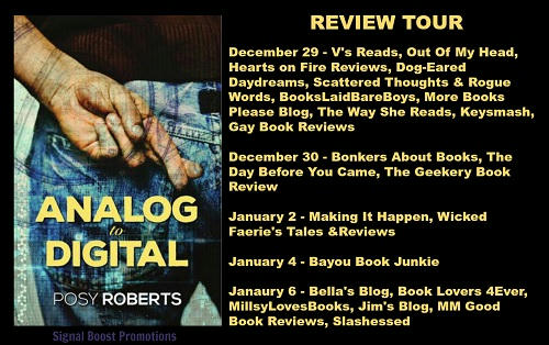 Posy Roberts - Analog to Digital Review Banner
