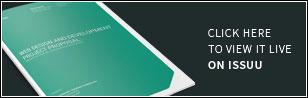 Sina Web Proposal - Live Preview