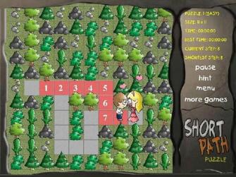 Short path Puzzle