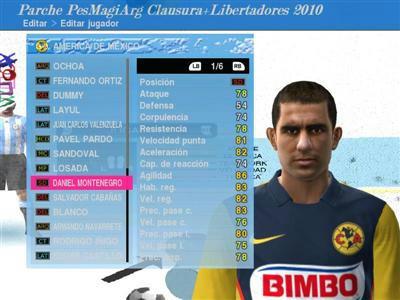 Nuevo parche Clausura Argentino+ Libertadores y Sudamericana 2010 53cdc8e6be2474212b16e07201f1a2304g