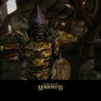 Morrowind splash pack gallery image sample 2