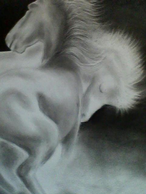 Mi Dibujo a Lapiz Carbon [ Caballos ] - Taringa!