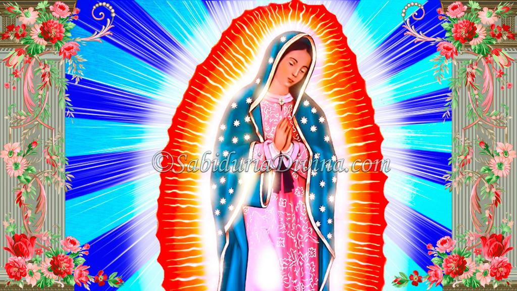 Virgen de Guadalupe entre rosas