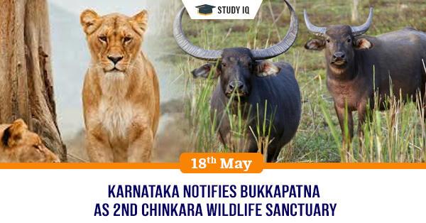 GK Topic, Karnataka notifies Bukkapatna as 2nd Chinkara Wildlife