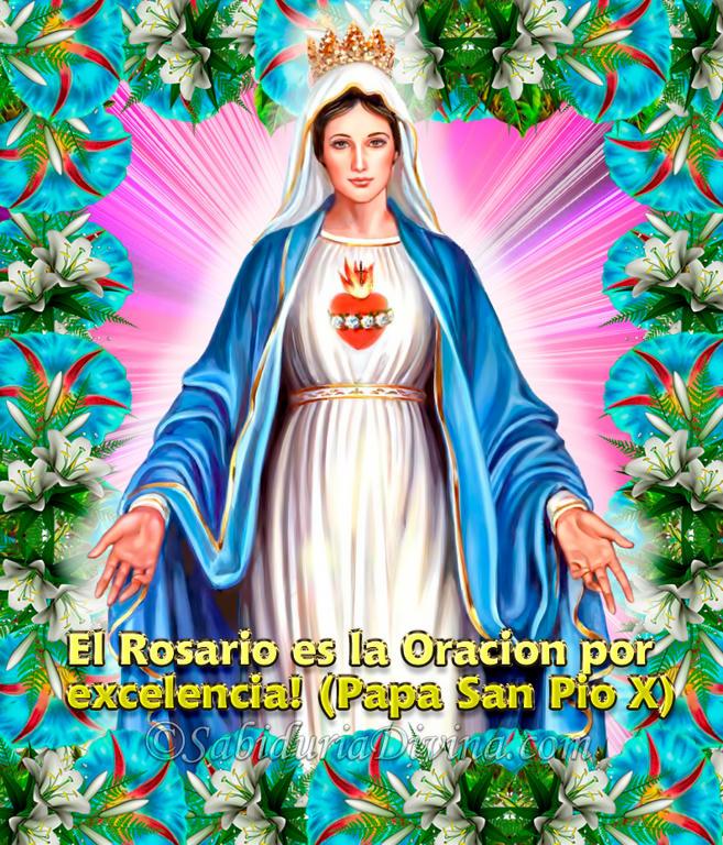 Nuestra Señora la Virgen de la Medalla Milagrosa (4)