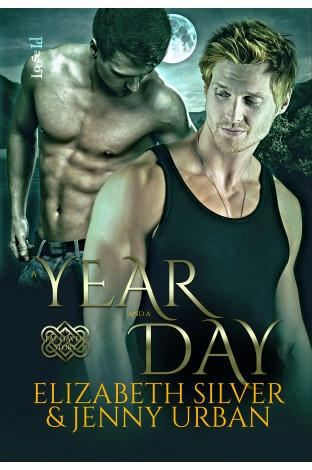 Elizabeth Silver & Jenny Urban - A Year and A Day Cover