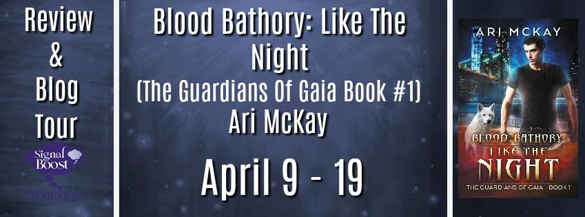 Ari McKay - Like The Night RTBanner