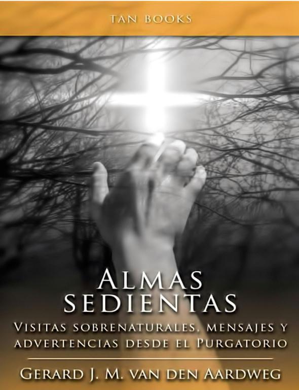 Almas sedientas - Testimonios desde el Purgatorio - Gerard J.M. van den Aardweg