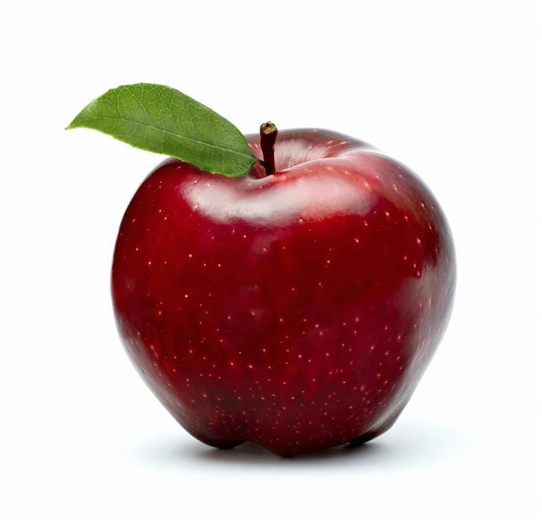 :: لا اقل تا زنده ام سیبی برایم قاچ کن ::
