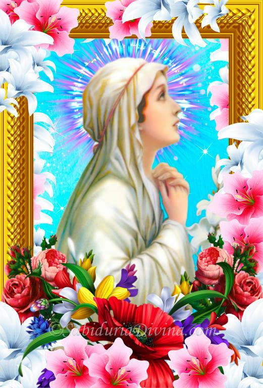Virgen Inmaculada, Purísima y Santísima. Virgen blanca, Pura y Santa