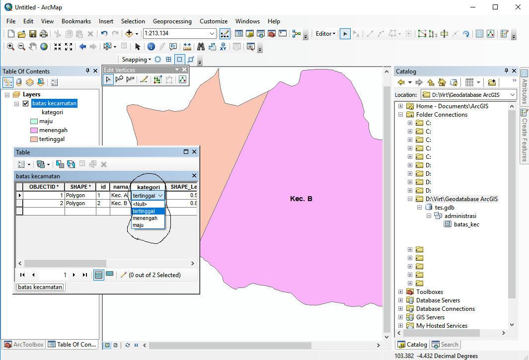 Konversi Feature Class sebuah Geodatabase yang mempunyai Domain dan Subtype kedalam format SHP