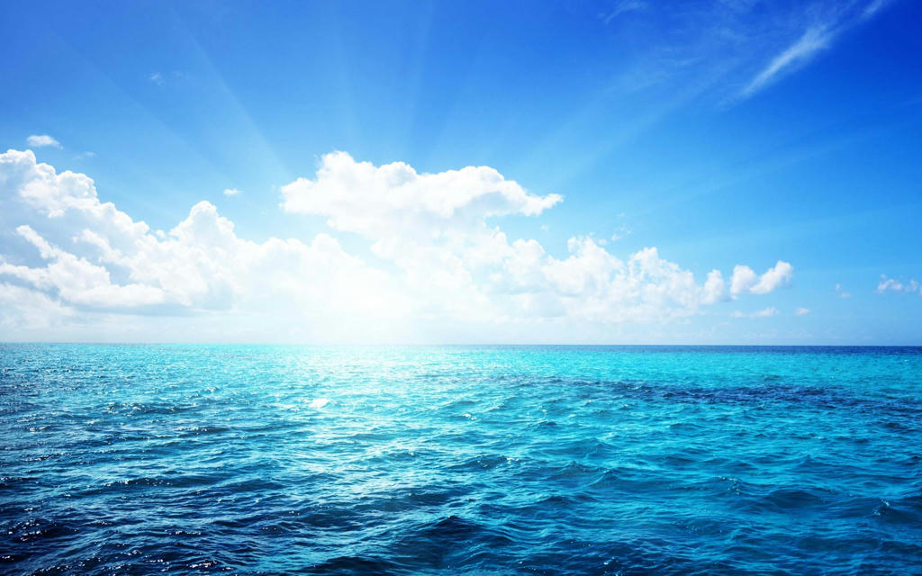 :: در تُنگ، دیگر شور دریا غوطه ور نیست ::