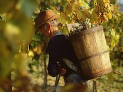 "Weekend Warrior Wine Deals   Tokaji Aszu, the ""Wine of Kings, King of Wines"""