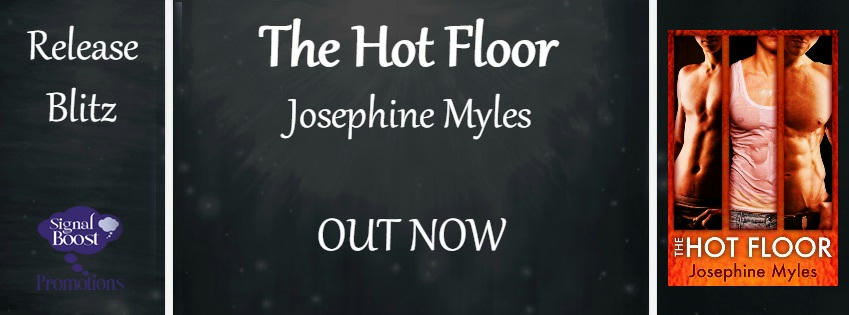 Josephine Myles - The Hot Floor RB Banner