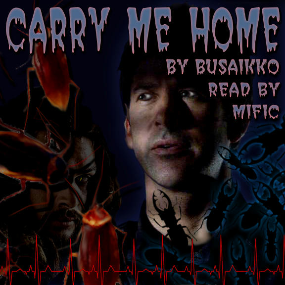 spooky dark pic of John with Ronon shadowy behind him, insects swarming in foreground and podfic cover text