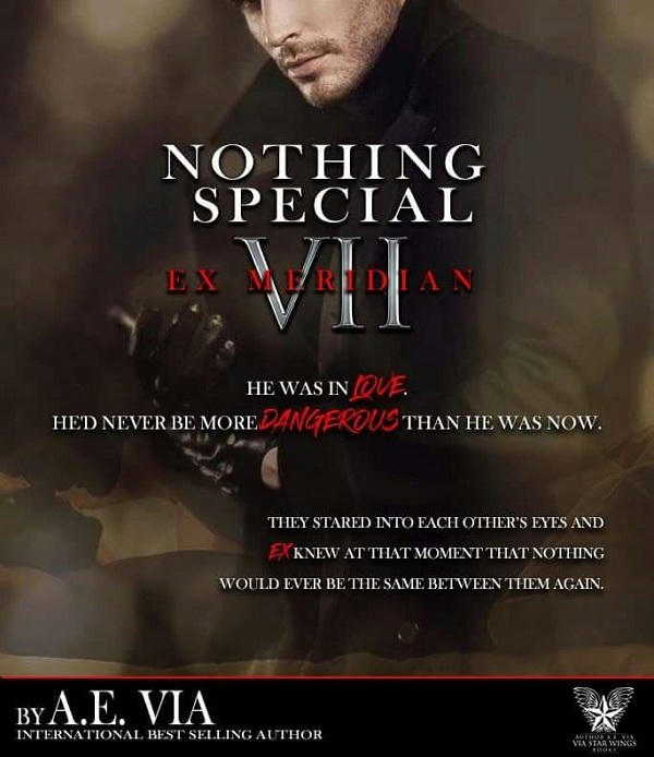 A.E. Via - Nothing Special VII - EX Meridian Teaser 2