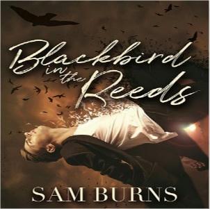 Sam Burns - Blackbird In the Reeds Square