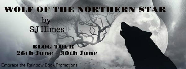 S.J. Himes - Wolf of the Northern Star BT banner