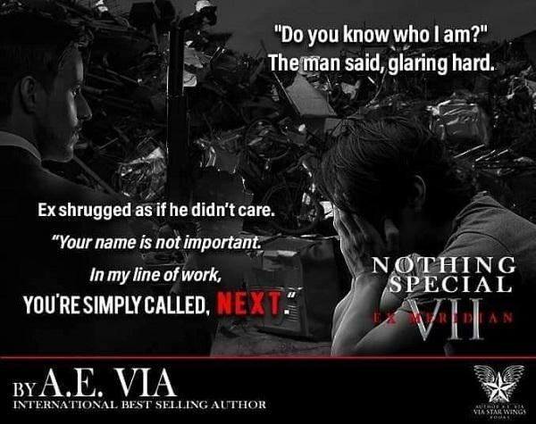 A.E. Via - Nothing Special VII - EX Meridian Teaser 1
