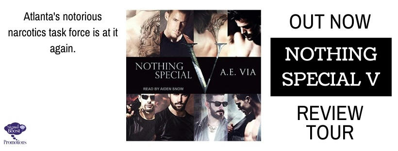 A.E. Via - Nothing Special V Audio RTBANNER-114