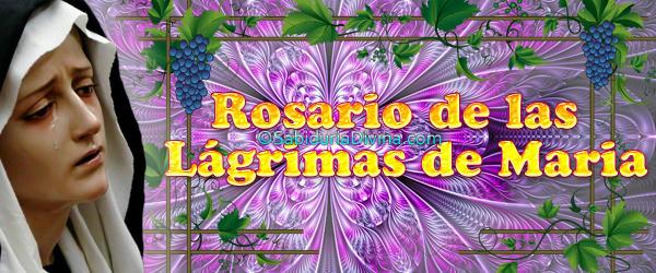Rosario Lágrimas - Cabecera