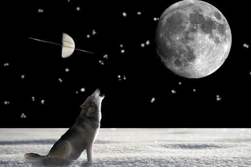 Un nada alentador 2030 prevén científicos por bamboleo lunar