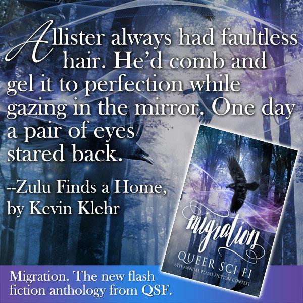 Migration QSF Flash Fiction Anthology MEME 1